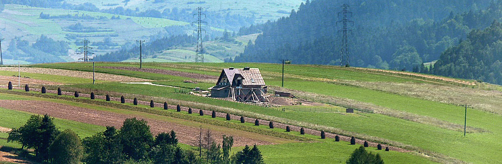 Banner_Polsko_2009.jpg